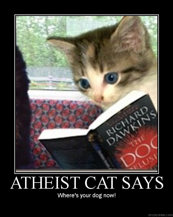 atheist cats