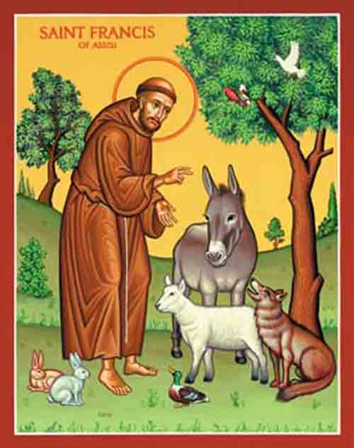 St Francis & animal blessings