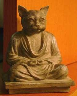 The Guru's cat