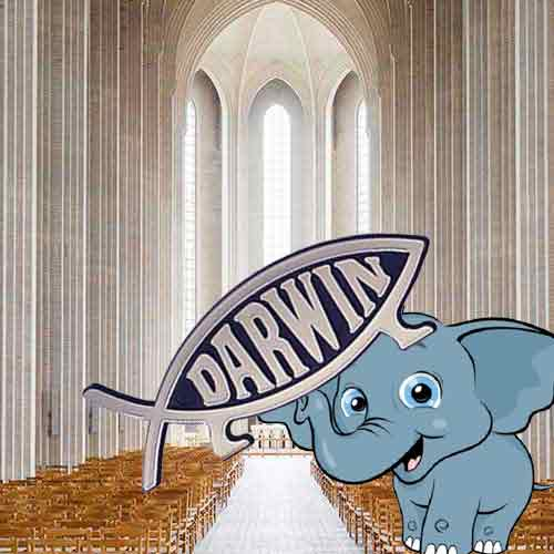 Evolution <p> The Elephant in the Empty Nave